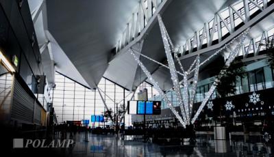 Wizualizacja Lotnisko Chopina